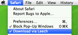 leech screenshot download manager