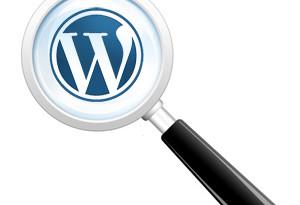 wordpress search magnifying glass