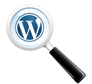 wordpress search magnifying glass
