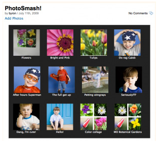 Photo Smash Galleries