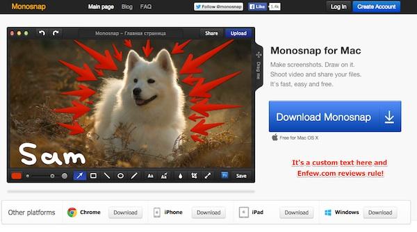 monosnap enfew.com review
